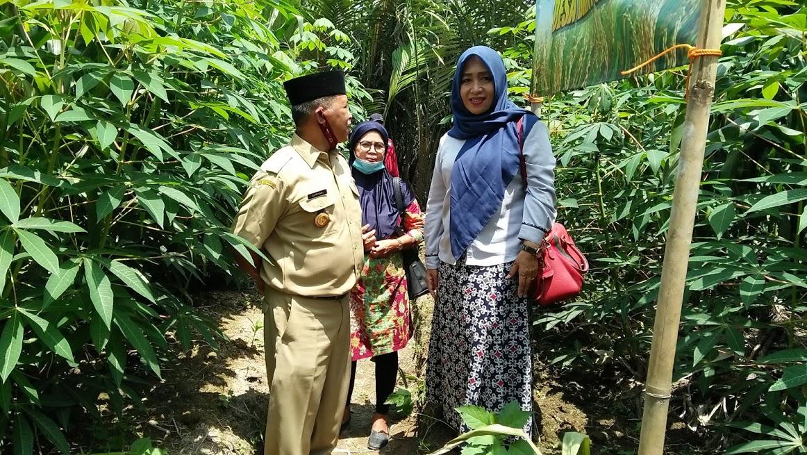 Image : Dampingi Program Ketahanan Pangan, Anggota DPR D Jateng Hj.Endrianingsih Yunita Tinjau Pertanian Di Desa Banyuadem